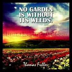Fuller-GardenWithoutWeeds