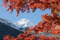 Herbst in Saas-Fee
