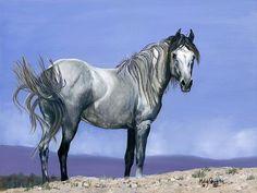 Centauro Sky Painting  - Centauro Sky Fine Art Print