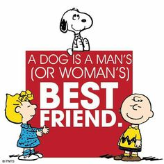 A dog is a man's (or a woman's) best friend.
