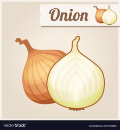 Detailed Icon Onion vector image on VectorStock Free Vector Images, Vector Free, Food Flashcards, Food Icons, Vector Stock, Cartoon Images, Toddler Activities, Doodle Art, Art Images