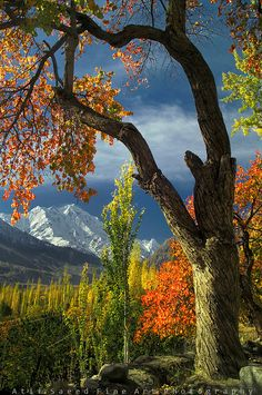 Mount Rakaposhi in Autumn..