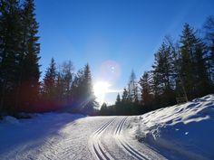 Wer morgens fleißig arbeiten beginnt - hat sich nachmittags Sonnengenuss beim Langlaufen verdient 😊. Genussvolle Grüße #Diätologin #EdburgEdlinger Sports, Outdoor, Cross Country Skiing, Long Distance, Ski, Hs Sports, Outdoors, Outdoor Games, Sport