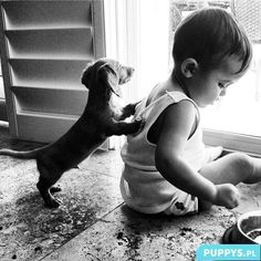 Dog...with...baby