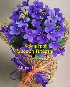 Good Morning Good Night, Grapevine Wreath, Birthday Wishes, Cool Photos, Colours, Wreaths, In This Moment, Plants, Image