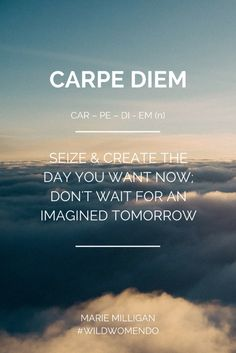 Wild Women Do, Carpe Diem. Seize & create the day you want now, don't wait for an imagined tomorrow. #WildWomenDo #WildWomen #Wild #Create #Courage #CarpeDiem #Quotes #Meme Image: Unsplash Text: Marie Milligan