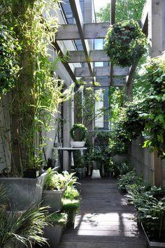 Winner of Best Amateur Small Garden in 2014 Gardenista Considered Design Awards, Ashley Hamilton | Gardenista