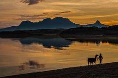 Lama i solnedgang Foto: Odd-Rune Wang, lastet opp i fb-gruppa Bodø i dag My Fb, Runes, Celestial, Mountains, Nature, Travel, Outdoor, Outdoors, Naturaleza