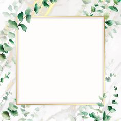 Hand drawn eucalyptus leaf with square gold frame vector | premium image by rawpixel.com Black Phone Wallpaper, Framed Wallpaper, Flower Background Wallpaper, Leaf Background, Background Pictures, Flower Backgrounds, Background Patterns, Wallpaper Backgrounds, Wallpapers