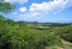 Check out the Vieques Island Vacation Rentals we have to offer. http://tinyurl.com/pemmmtj