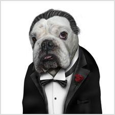 Takkoda animal characters - Dog father