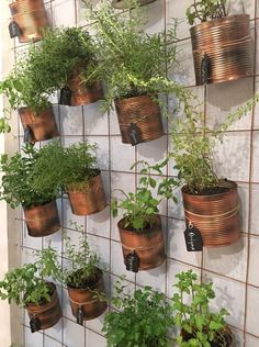 The Effective Pictures We Offer You About Balcony Garden wall A quality picture can tell you many things. You can find the most beautiful pictures that can be presented to you about Balcony Garden apa Jardim Vertical Diy, Vertical Garden Design, Vertical Gardens, Hanging Herb Gardens, Vertical Planter, Small Balcony Decor, Small Balcony Garden, Balcony Decoration, Balcony Ideas