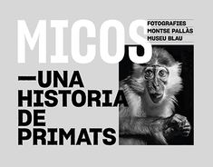 Micos - A Primate Story Primates, Working On Myself, New Work, Behance, Profile, Graphic Design, Tv, Gallery, Check