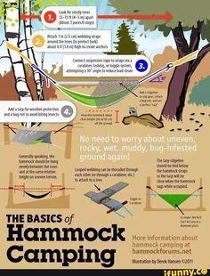 hammock, survival