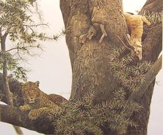 Art Country Canada -ROBERT BATEMAN Leopard and Thomson Gazelle Kill Offset limited edition print