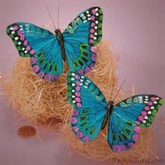 Butterflies On Pinterest Accessories Styling - Yahoo Image Search Results
