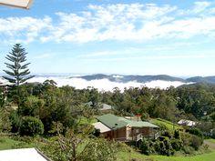 Tamborine Mountain, 2 Story Houses, Gold Coast, Paradise, Tours, Mountains, Book, Travel, Viajes