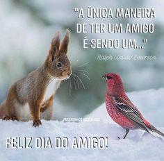 Ralph Waldo Emerson, Bird, Type 3, Facebook, Happy Friends Day, Behance, Inspiration Quotes, Girlfriends, Pictures