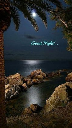 Good Night For Him, New Good Night Images, Good Morning Sunday Images, Good Night My Friend, Beautiful Good Night Images, Cute Good Night, Sweet Night, Good Night Moon, Good Night Greetings