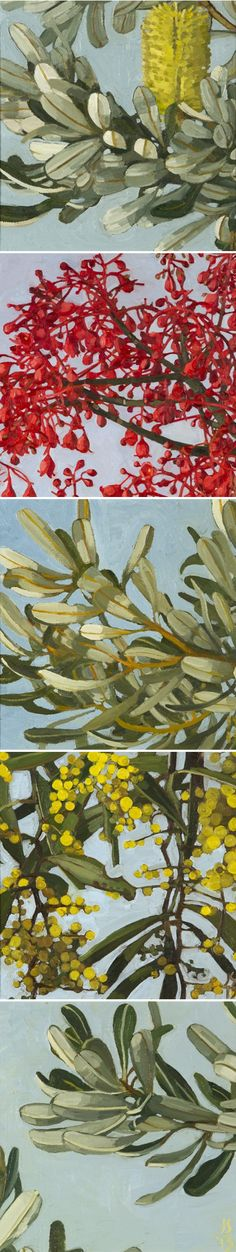 JUDITH SINNAMON, Australian artist, can't you tell? The yellow bottlebrush and the other yellow flowers (I don't know what they are called) are in bloom right now!