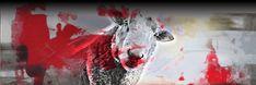 Los corderos mansos también serán devorados Plasma, Abstract, Artwork, Painting, Writer, Lamb, Sash, Summary, Work Of Art
