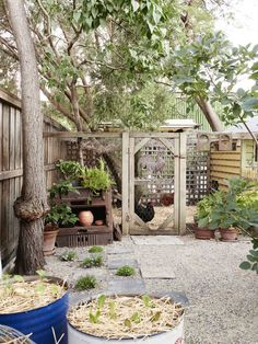 Chookhouse and chicken proof (elevated) planters Mariana Garcia-Katz & Family The Design Files Chicken Garden, Backyard Chicken Coops, Chickens Backyard, Chicken Pen, Chicken Life, Veggie Patch, Keeping Chickens, Family Garden, The Design Files