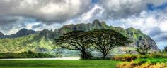 #Oahu after a rainy season... from #treyratcliff at http://www.StuckInCustoms.com - all images Creative Commons Noncommercial