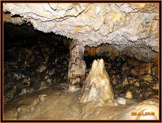 Bosque de Artea y Cueva de los Cristinos (Urbasa)