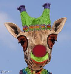 Giraffe Clown - Worth1000 Contests