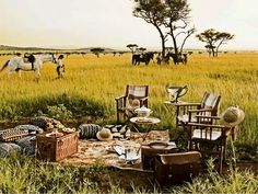 A stay at a luxury African safari lodge is undoubtedly the most popular style thanks to the relaxed and easygoing schedule where pampering reigns supreme Vintage Safari, Out Of Africa, Summer Picnic, Grand Tour, African Safari, Glamping, Event Design, Tours, Picnics