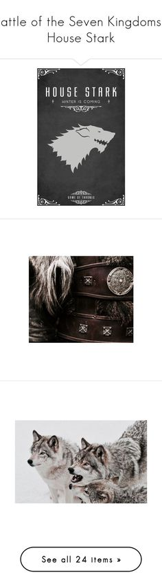 """Battle of the Seven Kingdoms - House Stark"" by miky94 on Polyvore featuring botsk, game of thrones, got, home, kitchen & dining, fantasy, backgrounds, harry potter e aesthetic"