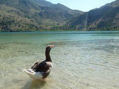 Top 10 Natural Landmarks Of Crete - Crete Blog - Cretico