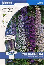 Johnsons-PITTURA Pack-Fiore-Delphinium Pacific Giganti misto - 100 semi