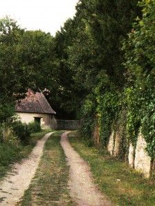 "A peaceful lane near Amboise <3 via ""France, daily photo"""