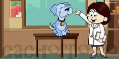 A Medicina Veterinária nos dias de hoje - Blog do Cachorro