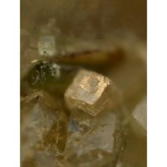 Ivanyukite-K,  	K2[Ti4(OH)2O2(SiO4)3]•9H2O,  Koashva Mount, Khibiny Massif, Kola, Russian Federation. Translucent cubes on, and in transparent natrolite matrix