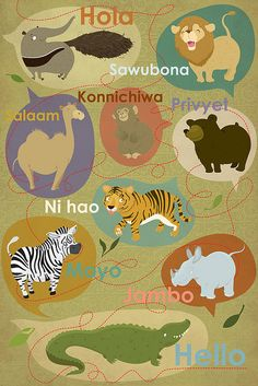 Zoo Animals and  their native hellos'