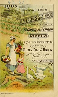 Perry & Co. wholesale & retail dealers in flower & garden seeds, agricultural implements &c. : also manufacturers of drain tile & brick Vintage Labels, Vintage Ephemera, Vintage Cards, Vintage Postcards, Vintage Images, Garden Catalogs, Seed Catalogs, Vintage Artwork, Vintage Prints