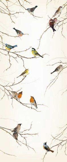 Komar fototapet - fugle