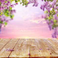 Find Spring Background Wooden Table stock images in HD and millions of other royalty-free stock photos, illustrations and vectors in the Shutterstock collection. Thousands of new, high-quality pictures added every day. Easter Backdrops, Muslin Backdrops, Photography Backdrops, Photography Photos, Green Grass Background, Digital Backdrops, Custom Backdrops, Backdrop Stand, Natural Scenery