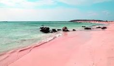 costa rica pink sand beaches - Google Search