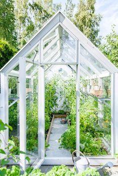Backyard Greenhouse, Greenhouse Plans, Backyard Landscaping, What Is A Conservatory, Garden Studio, Green Life, Garden Cottage, Houseplants, Vegetable Garden