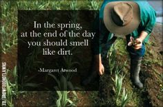 Margaret Atwood made good sense. In Memory of my sweet friend I first met when I moved here Marie. who loved the earth , flowers, trees. As well, as Sharon who took such joy in her flowers. Rest in Peace. Amish Proverbs, April Quotes, Garden Quotes, Margaret Atwood, Spring Weather, Words Worth, Garden Signs, Farm Gardens, Garden Inspiration