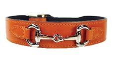 Gucci Style Dog Collar in Tangerine Nickel
