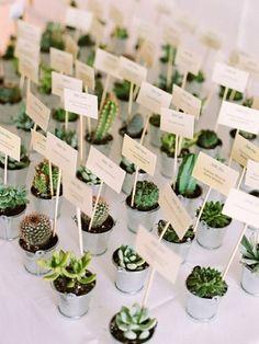 Cacti and succulent wedding favours. 78 wedding favour ideas #wedding #favour #ideas