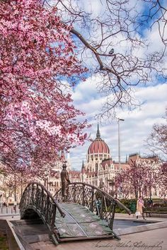 Budapest, Hungary- Tanks that Get Around is an online store …, America destinations - Travel Destinations Wonderful Places, Beautiful Places, Places To Travel, Places To Visit, Budapest Travel, Budapest City, Hungary Travel, Voyage Europe, Parcs