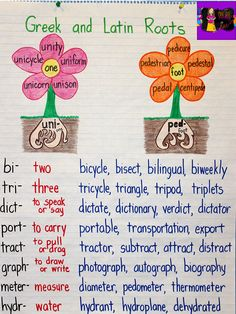and Latin Roots Anchor Chart Anchor your students' understanding of Greek and Latin roots with this anchor chart!Anchor your students' understanding of Greek and Latin roots with this anchor chart! Teaching Grammar, Teaching Writing, Teaching English, Ela Anchor Charts, Reading Anchor Charts, Word Study, Word Work, The Words, Latin Root Words