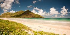 St. Kitts Information   CheapCaribbean.com