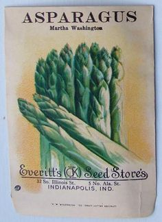 EVERITT'S SEED STORE,  Asparagus 230, Vintage Seed Packet