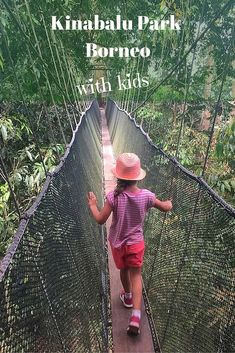 A day trip from Kota Kinabalu to Kinabalu Park with kids. Visiting the Poring hot springs and braving the canopy walkway along the way. Kinabalu Park, Kota Kinabalu, Borneo Travel, Malaysia Travel, Vietnam Travel, Asia Travel, Travel Tips, Travel With Kids, Family Travel